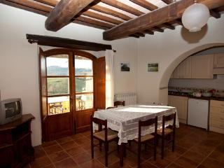 Nice Condo with Internet Access and Shared Outdoor Pool - Colle di Val d'Elsa vacation rentals