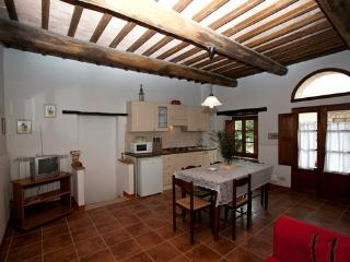 Adorable 1 bedroom Apartment in Colle di Val d'Elsa with Internet Access - Colle di Val d'Elsa vacation rentals