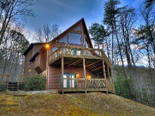 Elk Horn Lodge nestled among huge mtn laurels w/ breathtaking mtn views - Blue Ridge vacation rentals