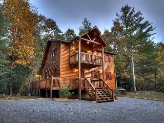 Private and Secluded Cabin with Creek Frontage on Laurel Creek - Blue Ridge vacation rentals