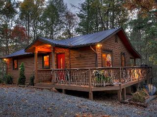 Tranquilty and Peace at this Mountain Cabin -  a stones throw to Toccoa River - Blue Ridge vacation rentals