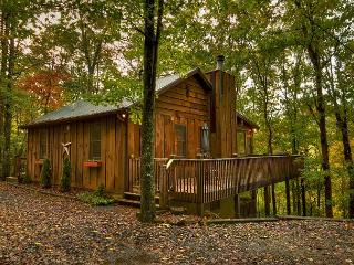 """America the Beautiful"" in a North Georgia Cabin. 3 bedroom mountain home!!! - Blue Ridge vacation rentals"