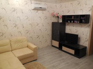 Cozy 2 bedroom Condo in Voronezh - Voronezh vacation rentals