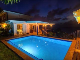 Pelican Peak Villa - Long Bay vacation rentals