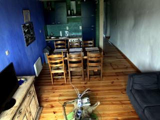 La Ligule - Gîte aux volets verts - Le Roeulx vacation rentals