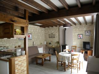 Charming 1 bedroom Gite in Chinon - Chinon vacation rentals
