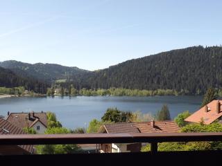 appartement en chalet vue sur le lac Gérardmer - Gerardmer vacation rentals