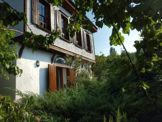 Fig House,Terrace Houses of Sirince - Sirince vacation rentals