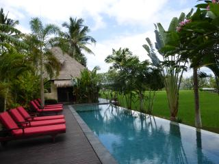 LUXURY Villa Jantung Ubud-Million $ Views ONLY$99 - Lodtunduh vacation rentals