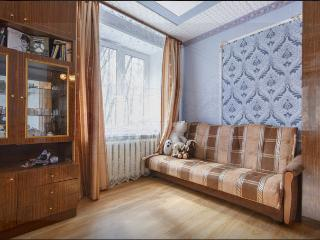 A quiet 2 bedroom apartment in 3 min from metro - Moscow vacation rentals