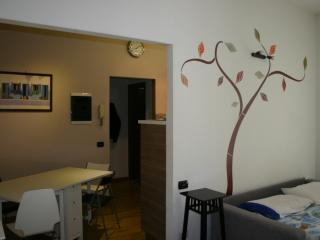 Nice Condo with Internet Access and A/C - Saronno vacation rentals