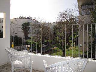 Natan He-haham spacious beauty - Tel Aviv vacation rentals