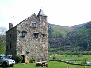14th Century Hunting lodge in the Pyrenees - Gere-Belesten vacation rentals