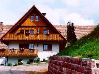 Vacation Apartment in Bad Rippoldsau-Schapbach - 969 sqft, 2 bedrooms, max. 5 people (# 7746) - Bad Rippoldsau-Schapbach vacation rentals
