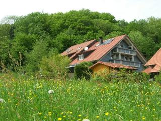 Vacation Apartment in Horben - combined living and sleeping area, max. 3 people (# 7778) - Horben vacation rentals