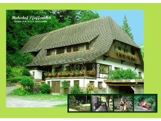 Vacation Apartment in Gengenbach - 1 bedroom, max. 2 pers. (# 7787) - Gengenbach vacation rentals