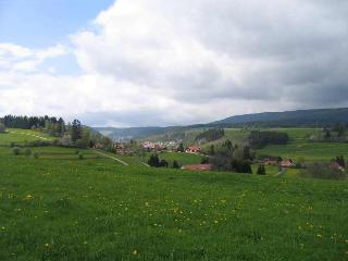 Vacation Apartment in Lenzkirch - 538 sqft, 1 living room / bedroom, max.2 people (# 7789) - Lenzkirch vacation rentals