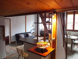 Lovely Historical flat in Lyon - Lyon vacation rentals