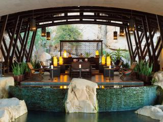 Cabo 3 Bdrm Penthouse-Jan 7 - 14 Grand Solmar - Cabo San Lucas vacation rentals