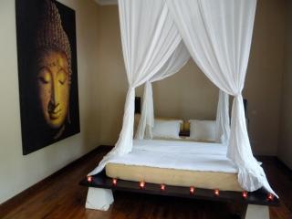 Perfect Villa with Deck and Internet Access - Dencarik vacation rentals
