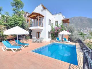 Villa Olive 5 - Kalkan vacation rentals