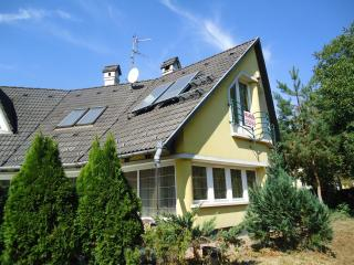 3 bedroom Villa with Internet Access in Miskolc - Miskolc vacation rentals