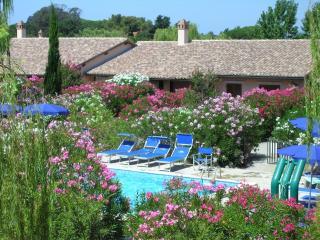 i Salici del Pingrosso Bilocale Gardenia 4 Posti - Marina Di Grosseto vacation rentals