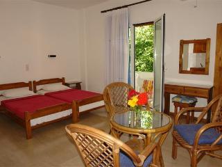 Beautiful Agios Gordios Studio rental with A/C - Agios Gordios vacation rentals