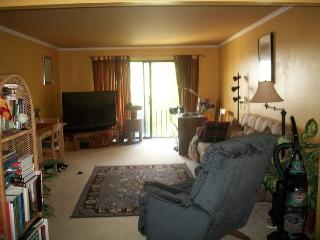 Nice Condo with Internet Access and A/C - Elgin vacation rentals