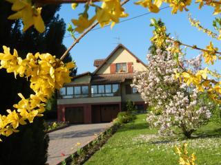 """Location du tilleul: Gite """"les Bleuets"""" - Burnhaupt-le-Haut vacation rentals"""