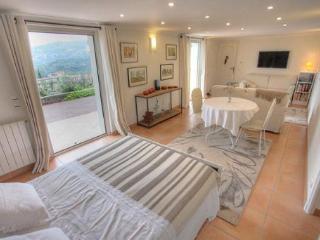 F1  maison avec piscine, vue , calme , jardin - Saint-Andre-de-la-Roche vacation rentals