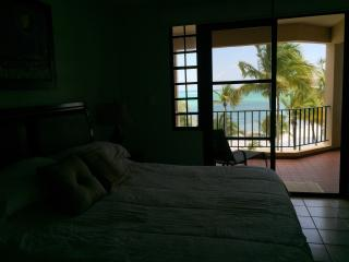 Perfect Condo with Internet Access and Dishwasher - Humacao vacation rentals
