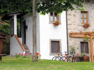 Nice Cottage with Deck and Satellite Or Cable TV - Camaldoli vacation rentals