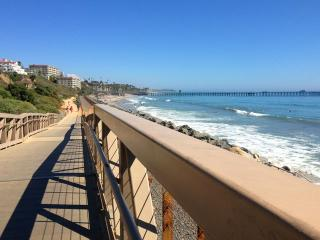 Modern Town Home by the Beach - San Clemente vacation rentals