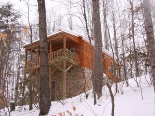 The Cottage:  Private/Wooded Getaway - Elkin vacation rentals