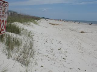 Steps to Beach with Ocean views!  All New - Hilton Head vacation rentals