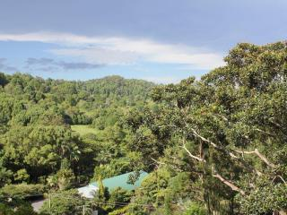 Amore Gardens House - Currumbin vacation rentals