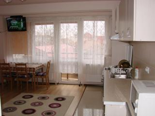 Friendly central apartment - Sibiu vacation rentals