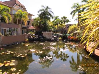 Resort style Living in Cairns - Cairns vacation rentals