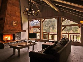 Cozy 3 bedroom Condo in Chatel with Garden - Chatel vacation rentals