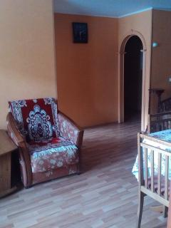 Comfortable Condo with Internet Access and A/C - Petropavlovsk-Kamchatskiy vacation rentals