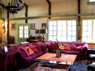WINTER HOLIDAYS IN WOODSTOCK in 5BR Artist's Home - New Woodstock vacation rentals