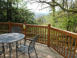 Moss Eccles - Log Cabin Neaum Crag Skelwith Bridge - Skelwith Bridge vacation rentals