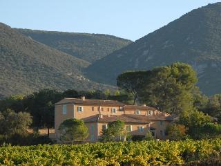 Au coeur du Luberon, une très belle bastide de 17 - Rustrel vacation rentals