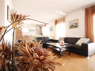 Luxury apartment with 3 bedrooms - Okrug Gornji vacation rentals