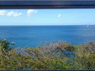 Superbe t2 moderne, vue mer et piscine - Schoelcher vacation rentals