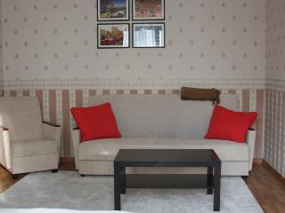 Romantic 1 bedroom Condo in Krasnogorsk with Internet Access - Krasnogorsk vacation rentals