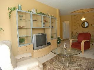 Nice Villa with Internet Access and A/C - Kissimmee vacation rentals