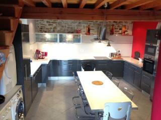 Grande maison de famille à Saint Sernin - Bouriege vacation rentals