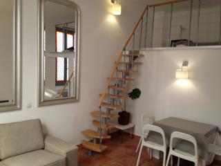 Luxury Apt in the heart of Avignon (Provence) - Avignon vacation rentals
